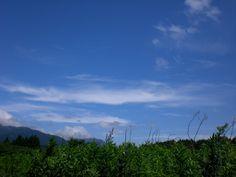 菰野町田光地区 梅雨の晴れ間 平成24年7月8日撮影