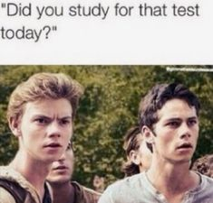Image about dylan o'brien in Thomas Brodie-Sangster by ✗Wanda Maximoff✗ Maze Runner Thomas, Newt Maze Runner, Maze Runner Funny, Maze Runner Movie, Maze Runner Series, Maze Runner Trilogy, Really Funny Memes, Stupid Funny Memes, Funny Relatable Memes