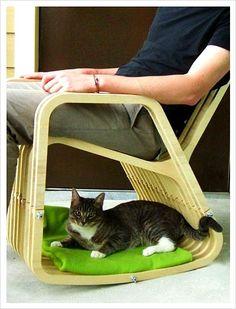 고양이를 위한 의자