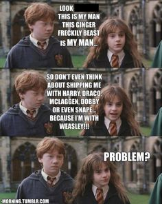 I don't understand why people want to pair Hermione with anyone other than Ron, they are meant for each other!!!