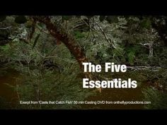 Bill Gammels 5 Essentials of Fly Casting.  A good video for Fly Casting Techniques.  Tom,  WesternNCFlyFishingGuide.com