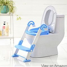Best of  Top 10 Best Potty Seats with Ladder in 2017 Reviews