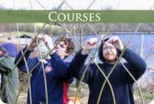 Living Willow Courses and Training
