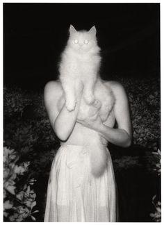 Fine black and white photography ladies portrait. Crazy Cat Lady, Crazy Cats, Art Et Illustration, Illustrations, Poster S, Cat People, Claude Monet, Fantastic Beasts, Akita