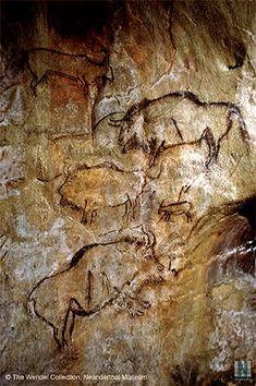 Salon Noir. Grotte de Niaux. Ariège