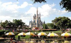 Todos os parques da Disneyworld na Flórida