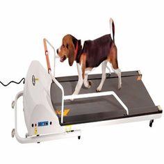 """-""""PetRun PR720F Dog Treadmill"""""""