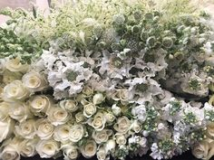 A selection of white summer favourites FLOWERS by EiLeen Ting ( Little People, Floral Wreath, Photo And Video, Videos, Flowers, Plants, Summer, Photos, Instagram