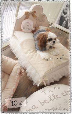 Modern Dog Bed- Luxury Pet Beds, Fancy Pet Bed, Louis Dog, Frame Pet Bed
