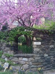 1000 Images About Secret And Hidden Gardens On Pinterest Secret Gardens The Secret Garden