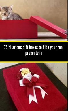 To make your gifts extra special think about using gift gag boxes to conceal the gift in as this is a sure way of getting some laughs 50th Birthday Gag Gifts, Friend Birthday Gifts, Birthday Quotes, Cute Baby Pictures, Weird Pictures, Funny Gags, Hilarious, Altered Cigar Boxes, Paris Wallpaper