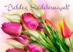 Birthday Cupcakes, Tulips, Projects To Try, Happy Birthday, Plants, Cards, Anniversary Cupcakes, Happy Brithday, Urari La Multi Ani
