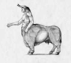 The little known Bucentaur (Greek)