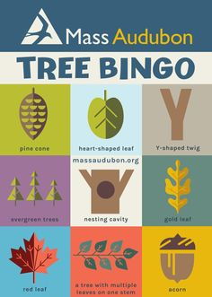 Celebrate fall this tree bingo printable Educational Activities For Kids, Outdoor Activities For Kids, Games For Kids, Crafts To Do, Crafts For Kids, Best Places To Vacation, Evergreen Trees, Kids Board, Autumn Theme