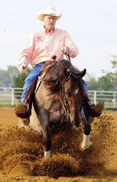 Roan reining