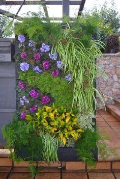 Hottest Sky Garden Ideas With Landscape To Apply Asap Vertical Green Wall, Vertical Garden Diy, Vertical Planter, Sky Garden, Dream Garden, Indoor Garden, Outdoor Gardens, Jardin Vertical Artificial, Vertikal Garden