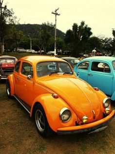 Colour Of Life ColorPalette Old-fashioned Fuska Wolkswagen Beetle Old Vintage…