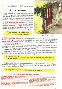 Manuels anciens: Orieux, Everaere, Leçons de choses CE (1952) French Tutorial, Study French, French Education, Agriculture, Science, Home Schooling, Biology, Communication, Year 2