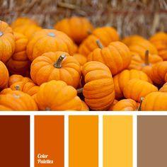 bright orange, color of pumpkin, color palette for halloween, dark orange, fall colors, fall colors 2015, Halloween colors, Halloween colors for decor, light orange, pumpkin color, shades of orange.