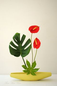 Ikebana by Thai Thomas Mai Van. Based in Le Harve, France. Ikebana Arrangements, Creative Flower Arrangements, Ikebana Flower Arrangement, Flower Vases, Floral Arrangements, Cactus Flower, Deco Floral, Arte Floral, Tropical Flowers