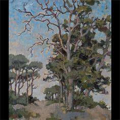 Gregoire Boonzaier - Study of bluegum trees, 1979