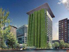 """Um dia todos os edifícios serão """"verdes"""""""