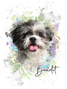 One of a kind Custom Pet Portrait in floral style. Art Fund, Cow Art, Watercolor Portraits, Wildlife Art, Dog Portraits, Illustrations, Animal Paintings, Shih Tzu, Draw
