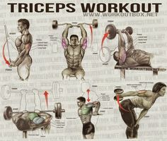 The Best Triceps Exercises for Mass - all-bodybuilding.com