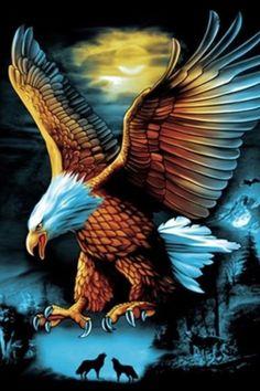 48213582 How Eagle hunt its prey? Eagle Wallpaper, Lion Wallpaper, Animal Wallpaper, Eagle Images, Eagle Pictures, Nature Pictures, Beautiful Nature Wallpaper, Beautiful Birds, Animals Beautiful