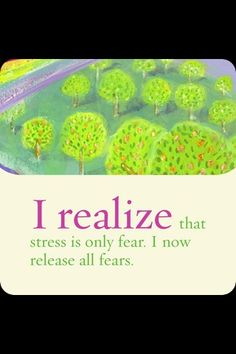 I realize that stress is only fear. I now release all fears. ~Louise Hay