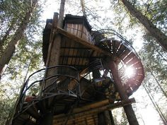 wooden tree house with stairs leading to the heavens