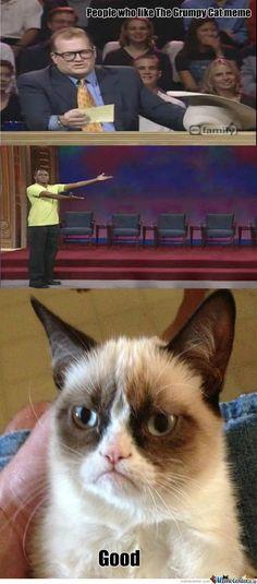 People who like the Grumpy Cat meme