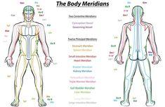 Η Υγεία, ο Έρωτας καί η Ψυχική Υγεία: Επιστημονική έρευνα κατέδειξε τελικά ότι υπάρχουν ... Meridian Lines, Shiatsu, Chronic Fatigue Symptoms, Pressure Points, Qigong, Best Vibrators, Acupressure, Human Body, Energy Channels