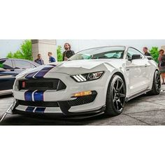 73 best 6th gen mustangs images on pinterest ford shelby shelby