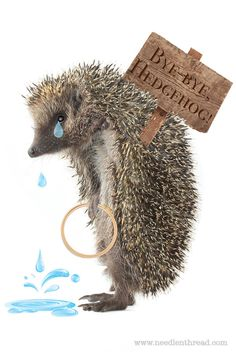 Bye-Bye, Hedgehog! Where to Find Fine Embroidery Supplies – NeedlenThread.com