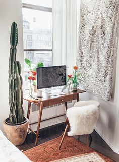 Love this cactus!
