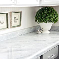 Shh.. it's not marble, it's PAINT! Easy & affordable DIY countertop makeover kit! Transform your existing countertops to look like natural stone. Giani™ 'White Diamond' Countertop Paint Kit