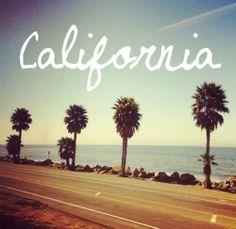 #california #summer #palm trees