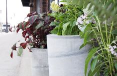 Concrete Planters DIY - Large Scale and Easy to Make | Curbly Concrete Edging, Diy Concrete Planters, Concrete Crafts, Concrete Projects, Concrete Garden, Large Planters, Outdoor Planters, Diy Planters, Concrete Curbing