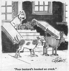 dog hook on crack ha ha Cartoon Jokes, Cartoon Dog, Funny Cartoons, Funny Comics, Haha Funny, Funny Dogs, Funny Animals, Funny Stuff, Funny Shit