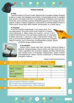 Szövegértést fejlesztő gyakorlatok 3.o. Grammar, Literature, Printables, Teaching, Education, School, Dyslexia, Speech Language Therapy, Literatura