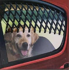 The Best Dog Car Barriers to keep your pup safe on the road! - #dogs #dogcare #travel #tips