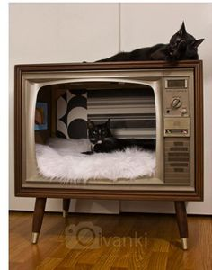 vintage TV DIY cat bed - Time to hit the resale shops! Is this not adorable? vintage TV DIY cat bed – Time to hit the resale shops! Is this not adorable? Vintage Tv, Upcycled Vintage, Vintage Style, Lit Chat Diy, Cat House Plans, Cat House Diy, Diy Cat Bed, Diy Bed, Pet Beds Diy