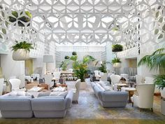 Blumenampeln und große Topfpflanzen für die Wohnzimmer-Lounge