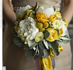 More yellow options, hopefully of the non tragic variety. Only, minus the droopy gray leaves. Love the ranunculus.