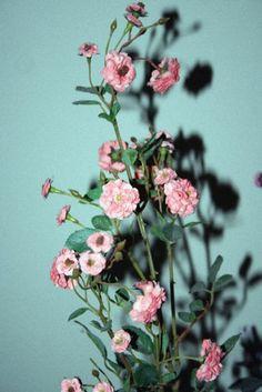floral no. 84