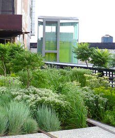 Landscaping Along The High Line, Downtown Manhattan
