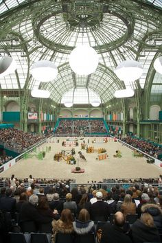 beautifulfences:The most beautiful horse show in the world? Saut Hermes au Grand Palais, Paris.