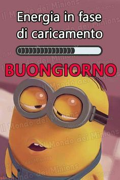 Minions 2, Tolu, Day For Night, New Years Eve Party, Good Mood, Vignettes, Good Morning, Humor, Words