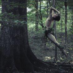 Peter Pan woodland